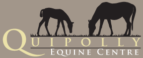 Quipolly Equine Centre logo